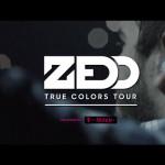 zedd_